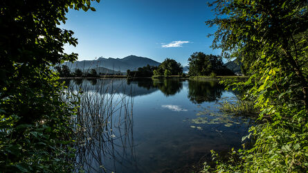 Teich spiegelt in der Sonne