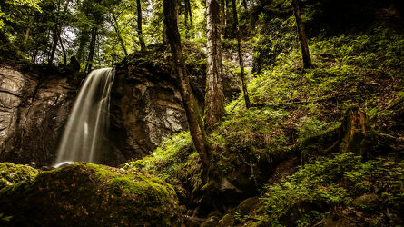 Bild mit Märchenwald, Blick in den Wald, Wald Bild, Wasserfall, Moos