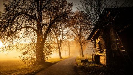 Bild mit Laubbäume, Morgenrot, Sonnenschein, Sonnenuntergang/Sonnenaufgang