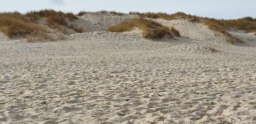 Strand und Dühnen
