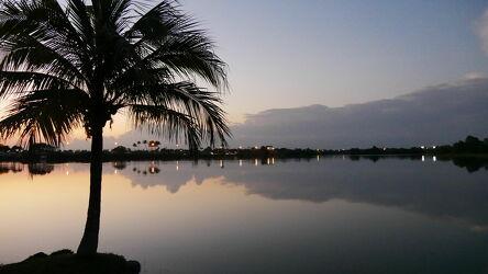 Bild mit Seen, Reflexion, Sonnenuntergang, Tageslicht, Panorama, Palme, Wolken am Himmel, USA, florida, Silverlake
