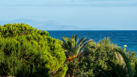 Bild mit Berge und Hügel, Bäume, Horizont, Palmen, Meerblick, Meer, Mittelmeer Pinie, Insel, palmenblätter