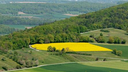 Bild mit Wälder, Frühling, Tageslicht, Straßen und Wege, Wald, Panorama, Natur und Landschaft, Rapsfeld