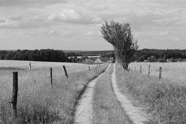 Bild mit Landschaften, Berge, Weg, Görlitz, Görlitz Blick, Feldweg, Goerlitz