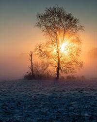 Sonnenaufgang im Teufelsmoor