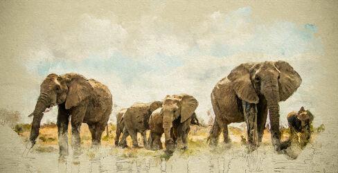 Bild mit Tiere, Elefant, Afrika, Herde, Nationalpark, Jungtier, safari, digital, Painting