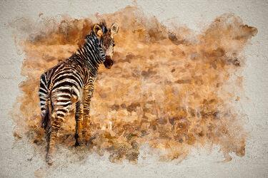 Bild mit Tiere, Abstrakt, Afrika, Zebra, safari, digital, Painting