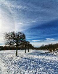 Bild mit Bäume, Blauer Himmel, Blauer Himmel mit Gegenlicht, winterlandschaft, Winteraufnahmen, Winterimpressionen, Winterzeit, Winterbilder, Wintertag, blauer Himmel Sonnenschein