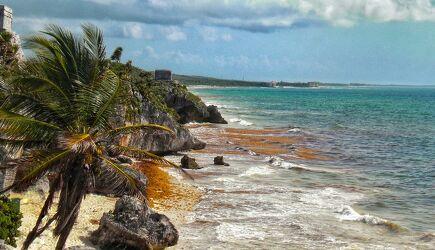 Bild mit Felsen, Palmen, Strand, Blauer Himmel, Strandbild, Traumstrände, Felsenküste, Tulum, Mexiko, Nordamerika