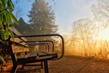 Bild mit Landschaften im Herbst, Parkanlage, Herbstsonne, Herbstlicht, Goldener Herbst, Herbststimmung, herbstlich, Herbstgarten, Herbstidylle, Parkbank