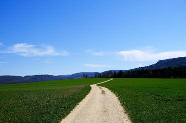 Bild mit Sonne, Grünes, Wiesen, Feldweg