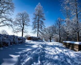 Bild mit Bäume, Winter, Schnee, winterlandschaft, Winterlandschaften