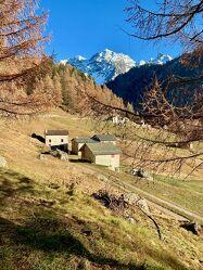 Bild mit Berge, Schnee, Wald, Landschaft, Schweiz