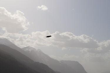 Bild mit Berge, Himmel, Täler, Vögel, Alpen Panorama, Entspannung, SEELE, entschleunigen