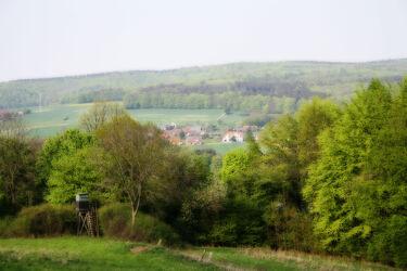 Bild mit Berge und Hügel, Wälder, Wald, Landschaft