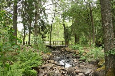 Bild mit Wälder, Ländliche Gebiete, Wald, Landschaft, Waldblick, Brücke