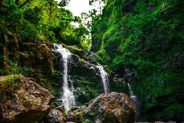 Bild mit Reisen, Wandern, abenteuer, Fernreisen, Maui, Tropen, Hawaii, Tropischer Wald