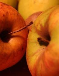 Bild mit Früchte,Lebensmittel,Essen,Frucht,Obst,Apfel,Apfel