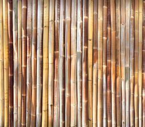Bild mit Gegenstände, Materialien, Holz, Bambus, bamboo, Bambusmatte, bambusstruktur, Struktur
