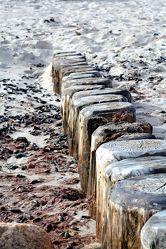 Beach Harmonie