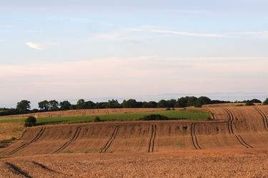 Bild mit Landschaften, Berge und Hügel, Hügel, Weiden und Wiesen, Getreide, Stroh, Ländliche Gebiete, Feld, Felder, Wiesen, landwirtschaft