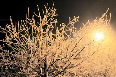 ice night