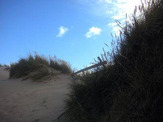 Bild mit Gegenstände, Natur, Pflanzen, Gräser, Himmel, Bäume, Wolken, Materialien, Stein, Sand, Architektur, Bauwerke, Straßen und Wege, Straßen