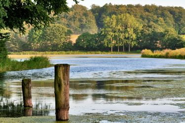 Bild mit Natur, Elemente, Wasser, Pflanzen, Gräser, Landschaften, Himmel, Bäume, Gewässer, Küsten und Ufer, Seen, Flüsse, Reflexion, Teiche