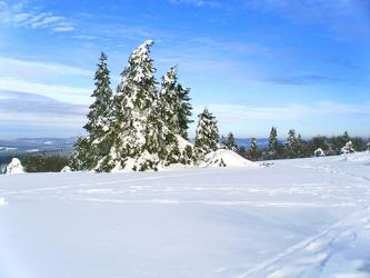 Winterday 2